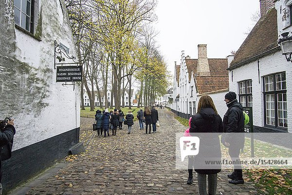 Bruges Belgium on November 25  2018: Beguinage in Bruges  cityscape panorama and old town facades  medieval gothic and baroque city in Belgium.