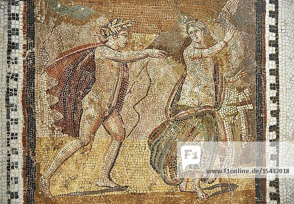Picture of a Roman mosaics design depicting scenes from mythology  from the ancient Roman city of Thysdrus. End of 2nd century AD  House in Jiliani Guirat area. El Djem Archaeological Museum  El Djem  Tunisia.This Roman mosaic depicts Aurore enticing Cephane  Apollo enticing Cyrene and Apollo persuing Daphne.