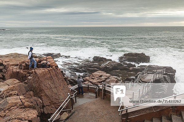 USA  Maine  Mt. Desert Island  Acadia National Park  coastal view by Thunder Hole with visitor  NR.