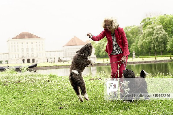 Senior woman playing with her dogs in park  in Nymphenburg  Munich  Germany.