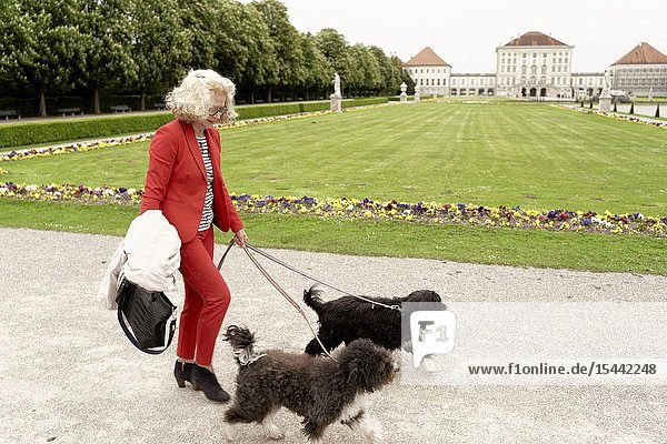 Senior woman walking with two dogs in park at touristic sight Nymphenburg palace  in Munich  Germany.