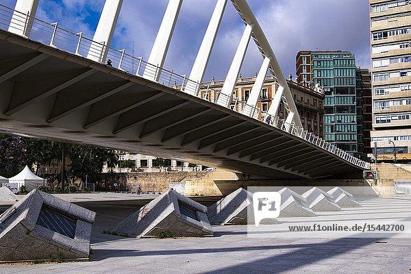 Calatrava bridge in Valencia  Spain  Europe.