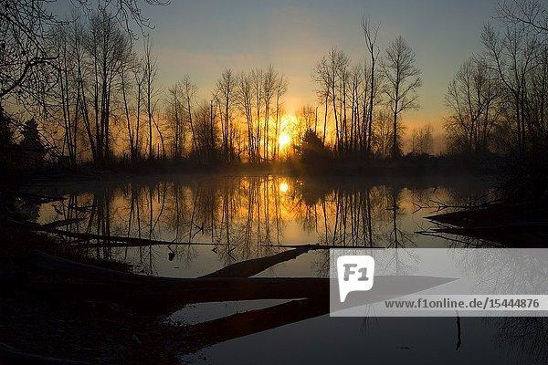 St Louis Ponds sunrise  St Louis Ponds Wildlife Area  Marion County  Oregon.
