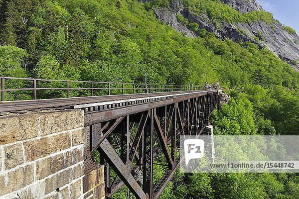 Willey Brook Trestle along the old Maine Central Railroad in Hart's Location  New Hampshire. This trestle is within Crawford Notch State Park. And since 1995 the Conway Scenic Railroad  which provides passenger excursion trains  has been using the track.