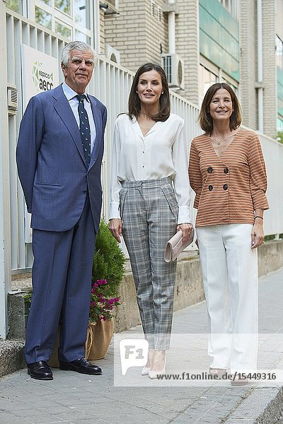 Queen Letizia of Spain attends Working Meeting of the Spanish Association Against Cancer (AECC) at Junta de Madrid of the AECC on July 1  2019 in Madrid  Spain