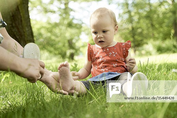 Dressing bare foot of baby toddler with shoe