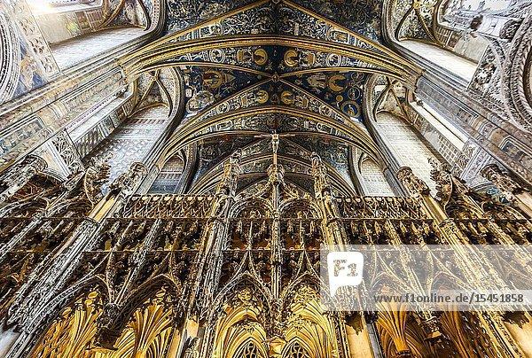 Interior of Albi Cathedral (Tarn Department  Occitanie Region  France)