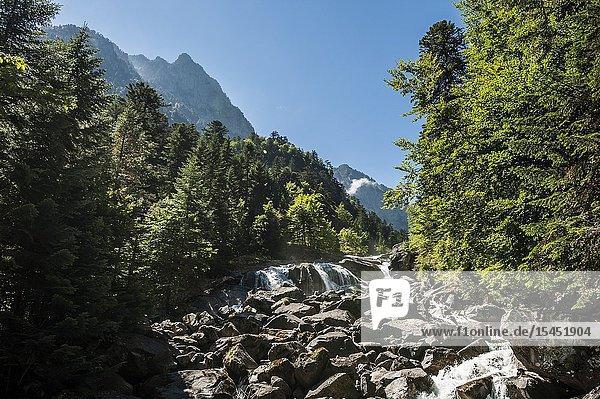 Marcadau river in Jéret Valley  Pyrenees national Park (Hautes-Pyrénées Department  Nouvelle-Aquitaine Region  France)