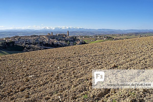 Morrovalle  Macerata district  Marche  Italy  Europe  landscape near the village in the background the Sibillini mountains.