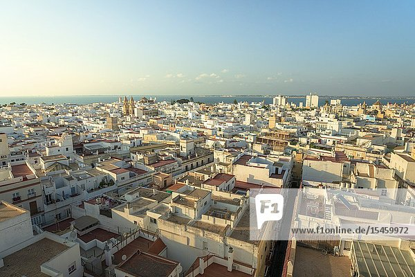 Old town buildings and skyline seen from Torre Tavira  famous watchout in Cadiz  Andalusia  Spain.