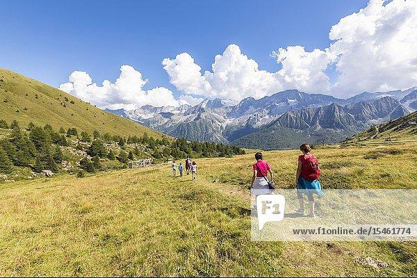 Hikers on path at Malga Valbione towards Passo Del Tonale  Valcamonica  province of Brescia  Lombardy  Italy.