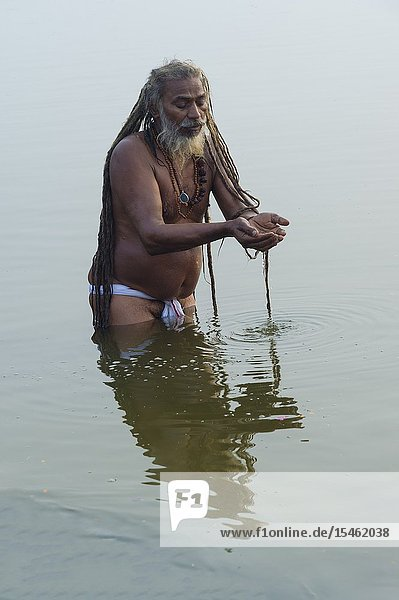 Rome baba bathing in the Ganges River at sunrise  For Editorial Use Only  Allahabad Kumbh Mela  World's largest religious gathering  Uttar Pradesh  India.