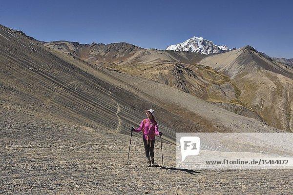 Trekking towards Huayna Potosi on the Cordillera Real Traverse  Bolivia.