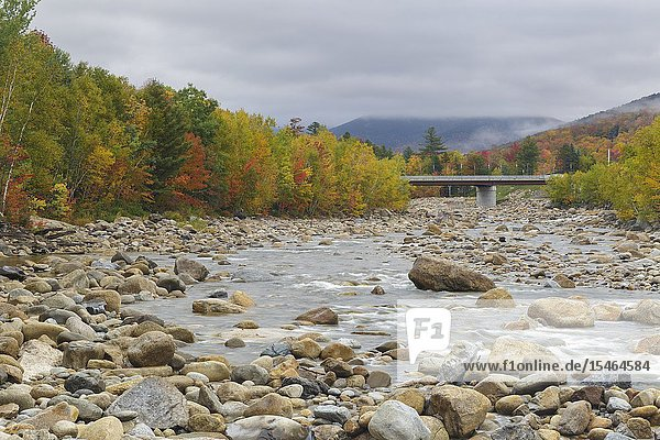 Autumn foliage along the East Branch of the Pemigewasset River  just below the Loon Mtn. Bridge  in Lincoln  New Hampshire on a cloudy autumn day.