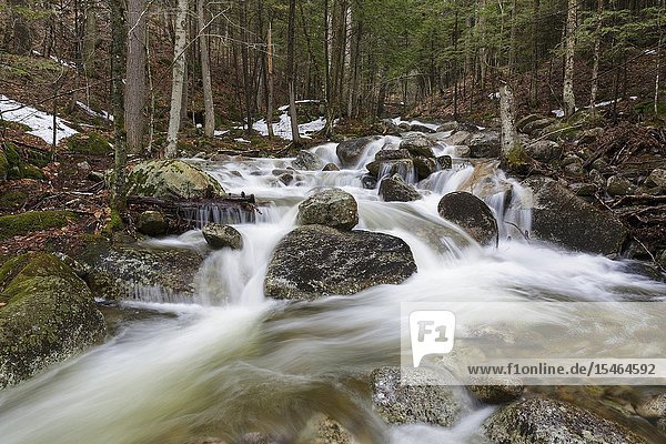 Cascade on Pollard Brook in Lincoln  New Hampshire during the spring months.