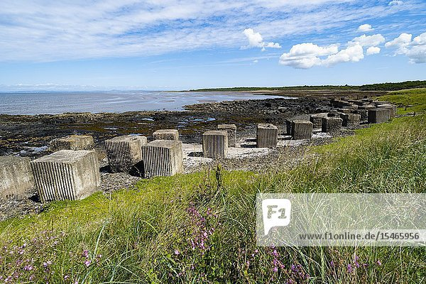 Aerial view of Second World War era anti-tank blocks on shore at Gosford Sands at Longiddry in East Lothian  Scotland  UK.