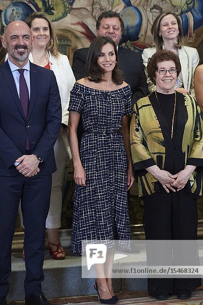 Queen Letizia of Spain attends Audience to a representation of the organizers of the International Congress of the International Association of Social Communication Studies (IAMCR / AIECS) at Zarzuela Palace on July 16  2019 in Madrid  Spain