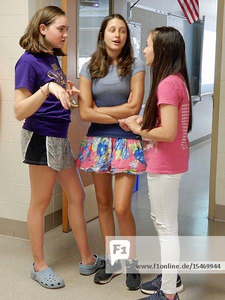 7th Grade Girls Chatting in School Hallway  Wellsville  New York  USA.