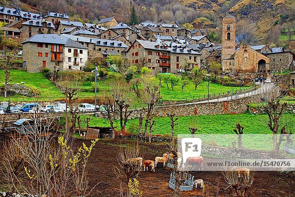 Village and church of the Nativitat de la Mare de Deu  Durro  Vall de Boí  Catalonia  Spain