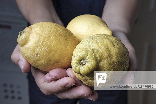 Organic unwaxed lemons.