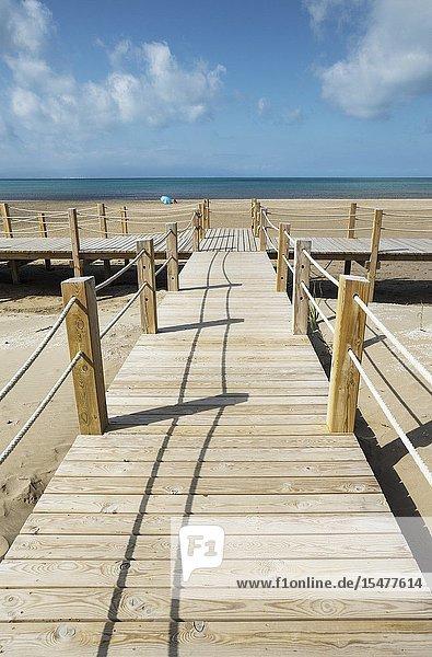 Wooden footbridges at the beach of Riumar. Environs of the Ebro Delta Nature Reserve  Tarragona province  Catalonia  Spain.