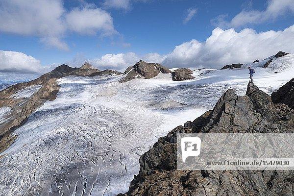 Hiker on top of rocks admiring Dosegu glacier  Gavia Pass  Valfurva  Stelvio National Park  Valtellina  Lombardy  Italy.