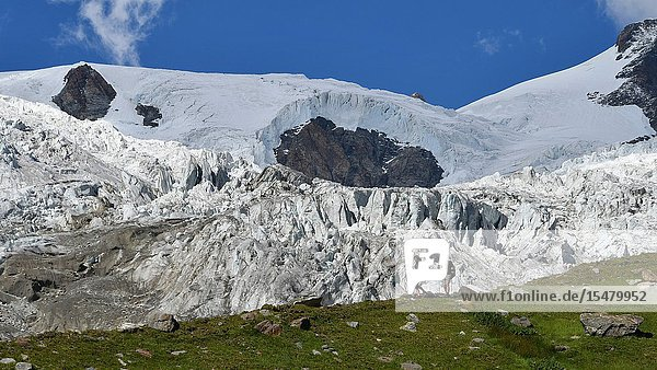 Trekkers with huge glacier behind  Lys Glacier  over Sources of Lys Gressoney Valley  Aosta Valley  Italy.