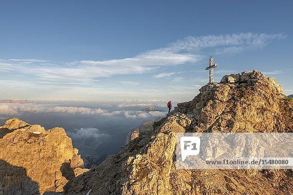 Gran Cir  Gardena Pass  Dolomites  Bolzano district  South Tyrol  Italy  Europe. A mountaineer climb the summit of the Gran Cir at sunrise (MR).