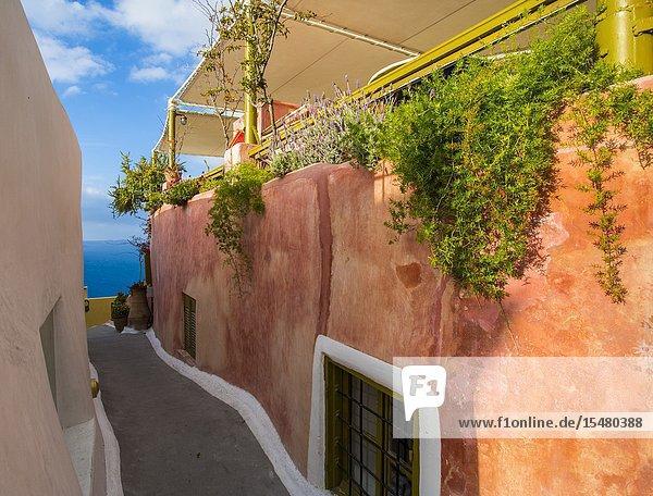 Narrow walkways in Oia  Santorini  Cyclades Islands  Greece.