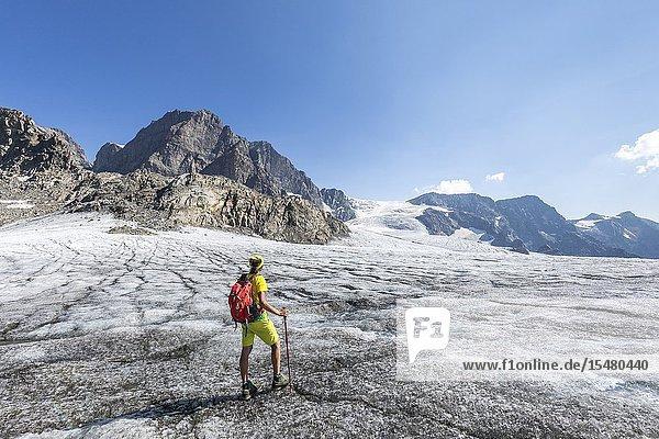 Hiker admiring Fellaria Glacier during summer  Malenco Valley  Sondrio Province  Valtellina  Lombardy  Italy Europe.
