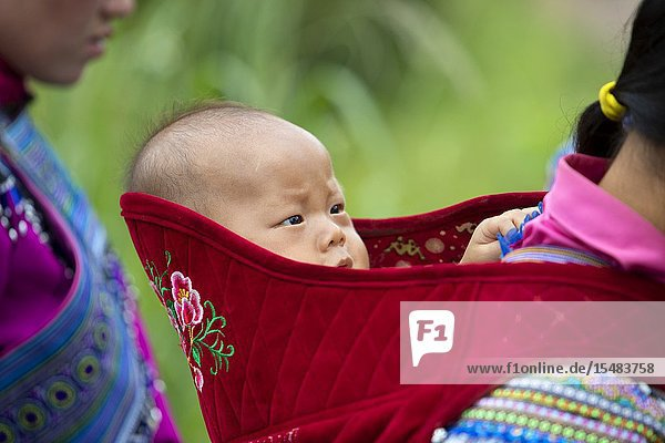 Flowers Hmong (hill tribe)  baby  Bac Ha  Lao Cai Province  Vietnam  Asia.