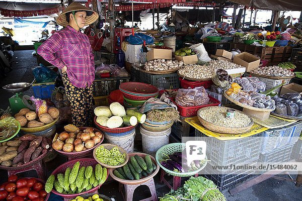 Woman selling vegetables in the fresh food market  Hoi An Old Town  Quang Nam province  Vietnam.