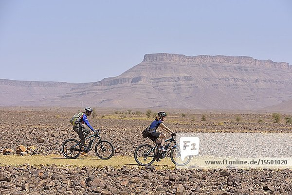 Mountain bikers with electric assistance on a trail through the reg  from Agdz to Zagora  Draa River valley  Province of Zagora  Region Draa-Tafilalet  Morocco  North West Africa.