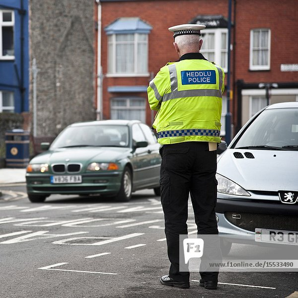 Rear view of a traffic policeman watching cars driving on a town street  Wales UK.