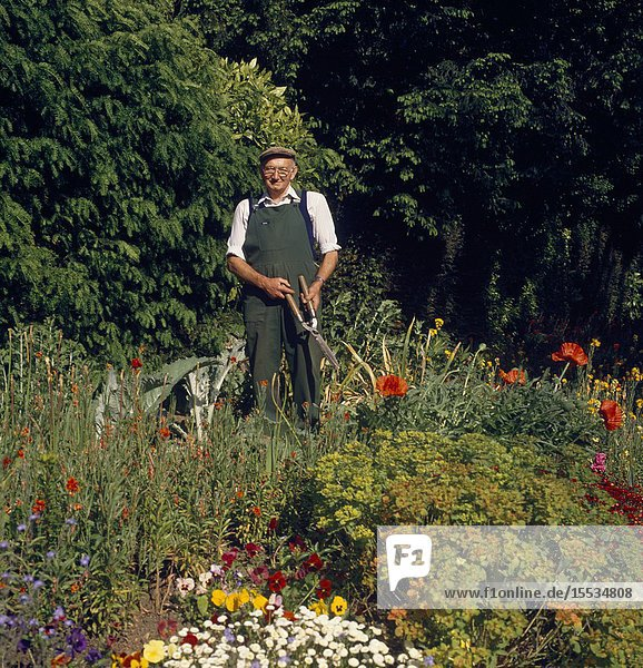 Elderly man  gardening