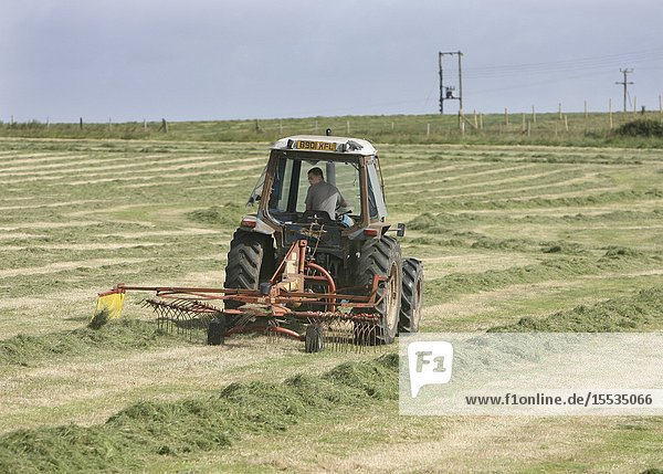 16 year old driving a tractor & raking up cut grass for cattle feed whilst on work experience  Dorset