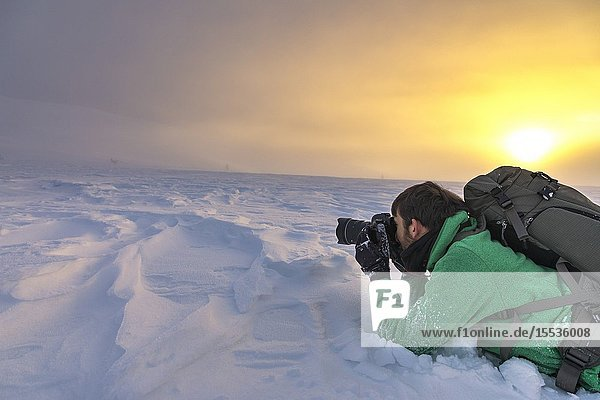 Photographer at Pallas-Yllastunturi National Park (Muonio  Lapland  Finland  Europe) (MR).