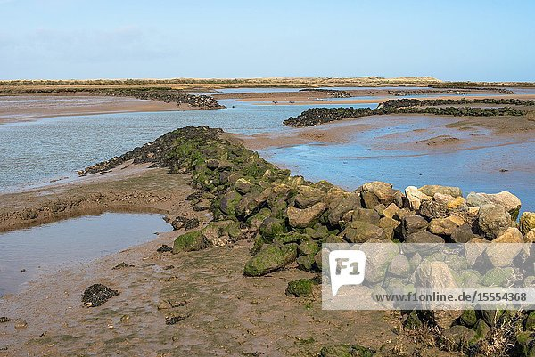 Views of mudflat at low tide from Norfolk Coast path National Trail near Barnham Overy Staithe  East Anglia  England  UK.