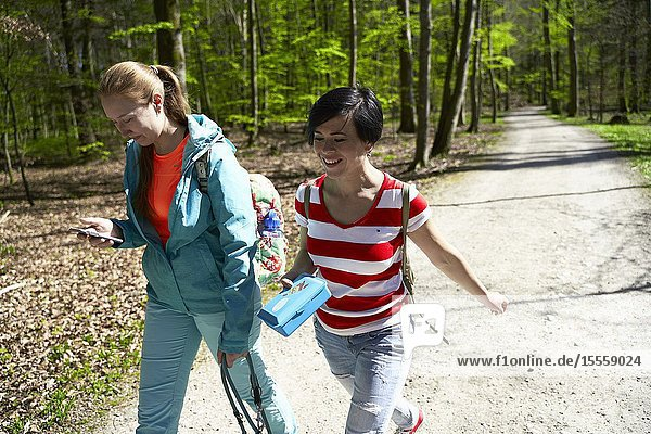 Two friends walking in forest  hiking trip  at Herrenchiemsee  Chiemsee  Bavaria  Germany