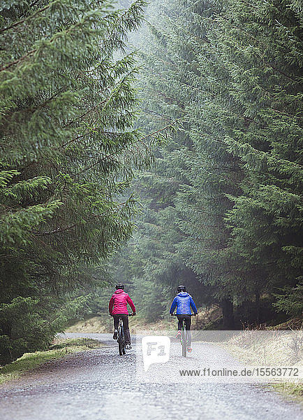 Couple mountain biking in woods