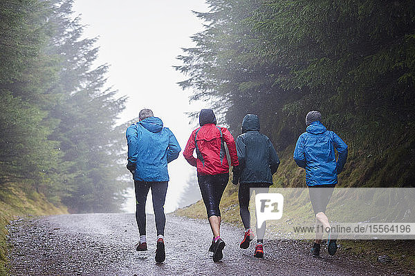 Family jogging in rainy woods