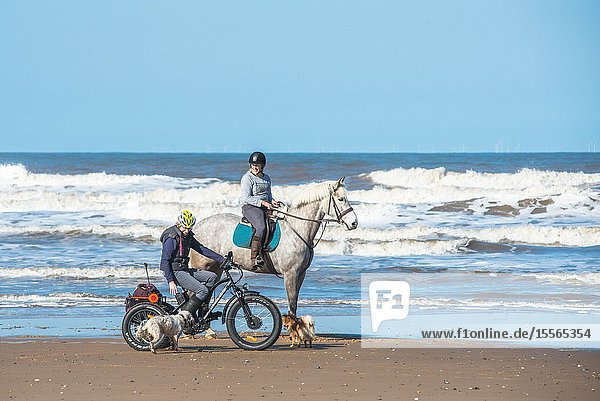 Horse and rider with her pet dogs on Holkham bay beach on North Nolfolk coast  East Anglia  England  UK.