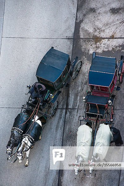 Vienna horse and carriage seen from the top of St Stephen's Cathedral North Tower,  Austria.