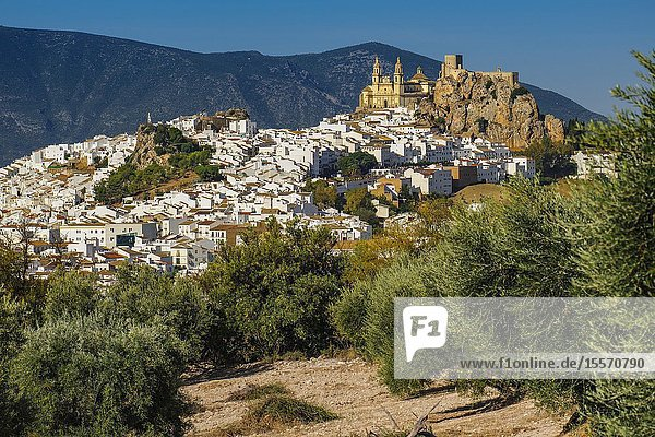 White village of Olvera  Moorish castle & Church of Our Lady of the Incarnation. Pueblos Blancos de la Sierra de Cadiz. Southern Andalusia  Spain. Europe.