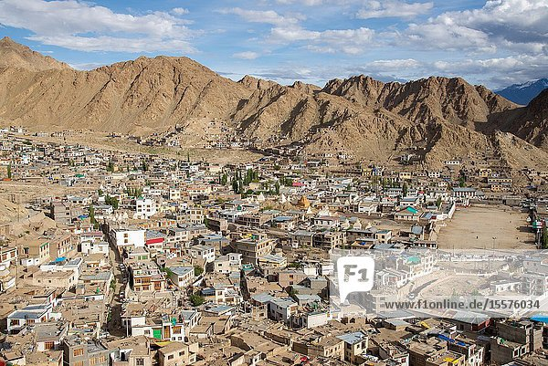 View at Leh  Ladakh  India from old Palace at top of hill