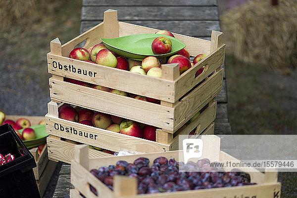 Stapel von Obstkisten