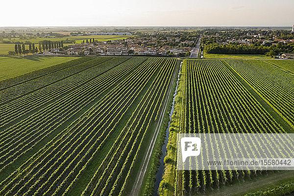 Landschaftliche Darstellung der Agrarlandschaft in Italien