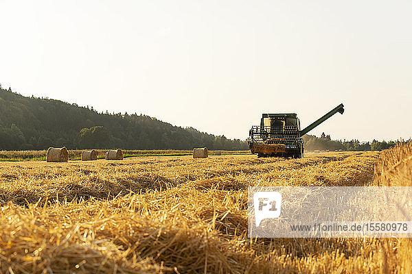 Mähdrescher bei der Ernte von Feldfrüchten auf dem Bauernhof gegen den klaren Himmel in Deutschland