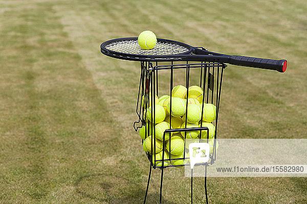 Tennisbälle im Korb