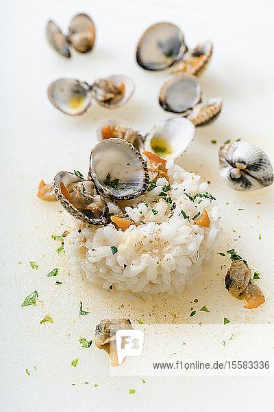 Nahaufnahme von Venusmuscheln und Reis auf weissem Hintergrund